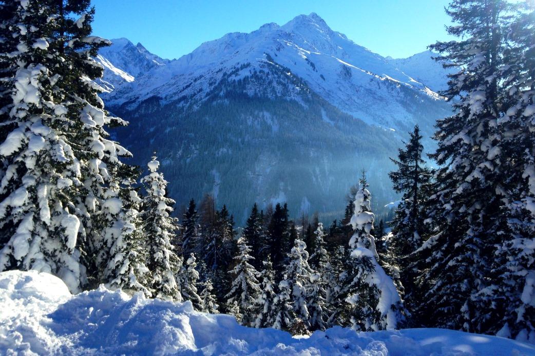 Ski Total | Snow on the trees in St Anton