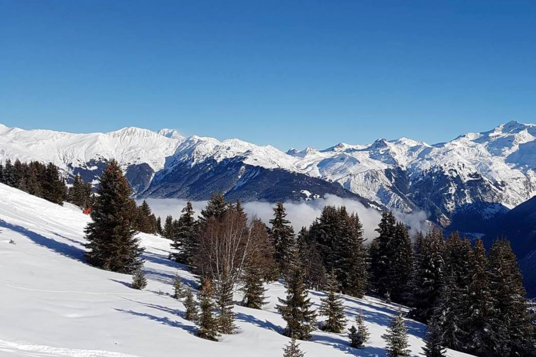 Ski Total | Courchevel mountains and snow fields with trees